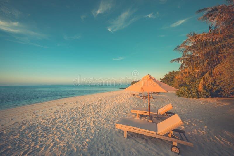 Praia bonita Cadeiras no Sandy Beach perto do mar Conceito das férias de verão e das férias Cena tropical inspirada Tranqu imagens de stock