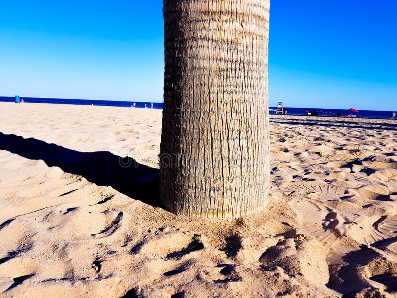 Praia bonita em Benidorm, Espanha Vista da praia com imagem próxima das palmeiras e do mar com guarda-chuvas e veraneantes foto de stock royalty free