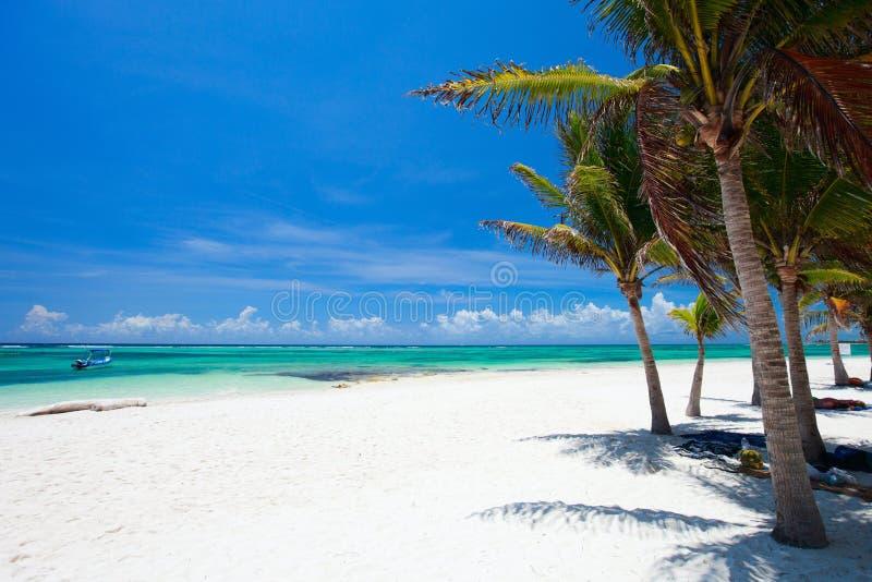 Praia bonita em México foto de stock royalty free