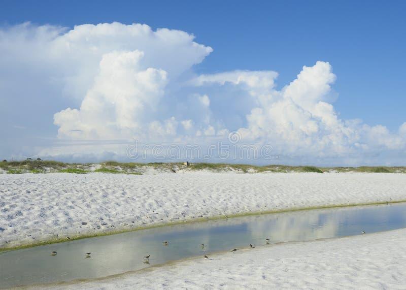 Praia branca de Florida da areia, associação da maré e nuvens de cúmulo bonitas foto de stock royalty free