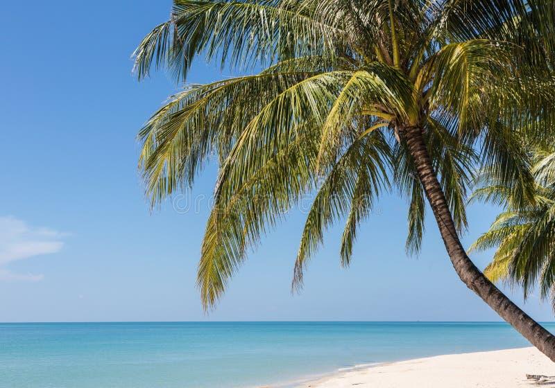 Praia branca em Koh Chang, uma ilha popular da areia no golfo de T imagem de stock royalty free