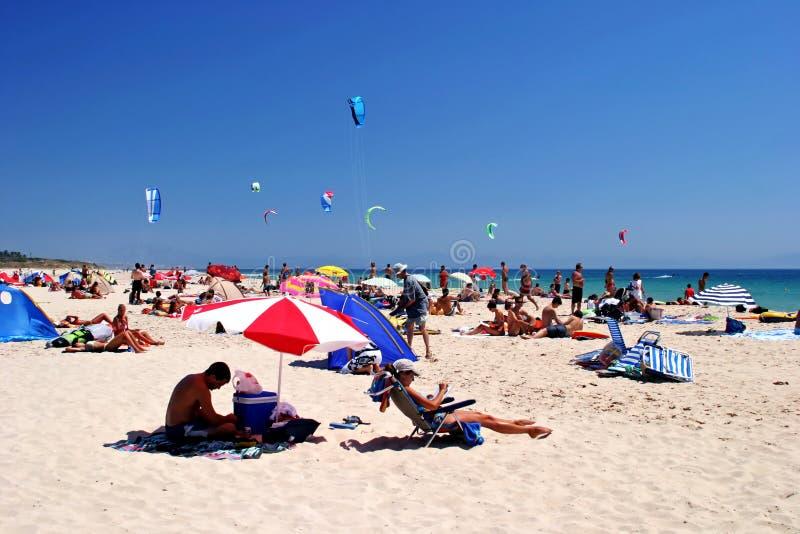 Praia branca, ensolarada, arenosa completamente dos kitesurfers em Tarifa, Spain fotografia de stock
