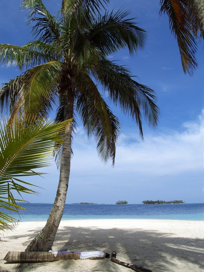 Praia branca tropical do Cararibe da areia