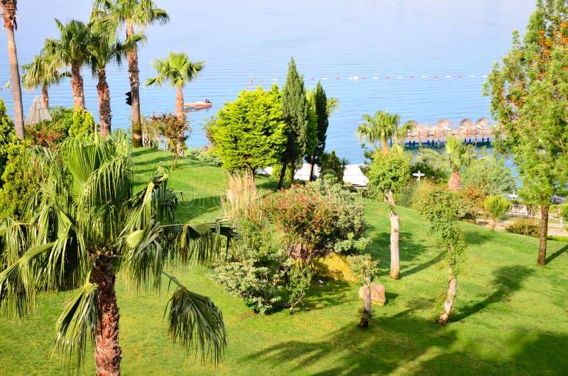 Praia com as palmeiras em Bodrum foto de stock