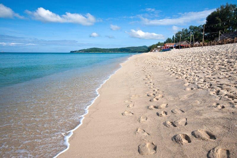 A praia com causar um crash acena nos tropics imagens de stock royalty free