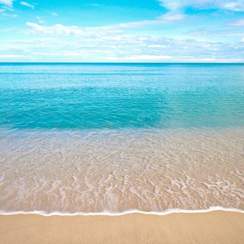 A praia com causar um crash acena nos tropics imagens de stock