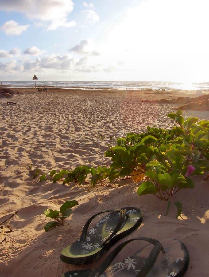 Praia com duas sapatas foto de stock