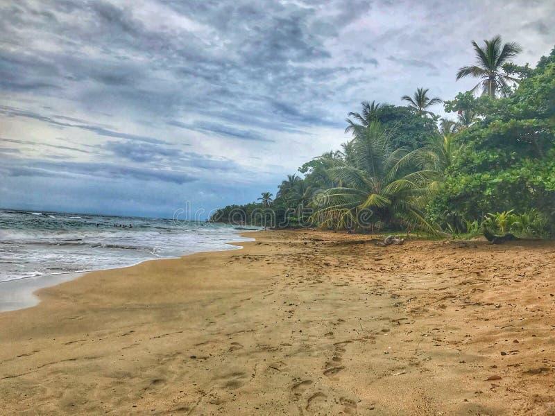 Praia Costa Rica de Cahuita fotos de stock royalty free