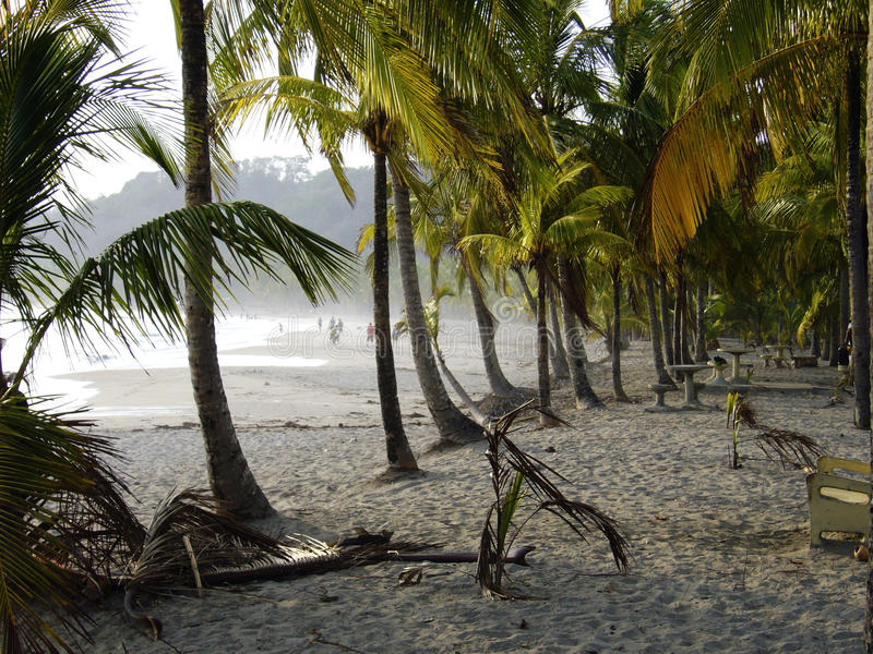 Praia Costa Rica de Carrillo fotografia de stock