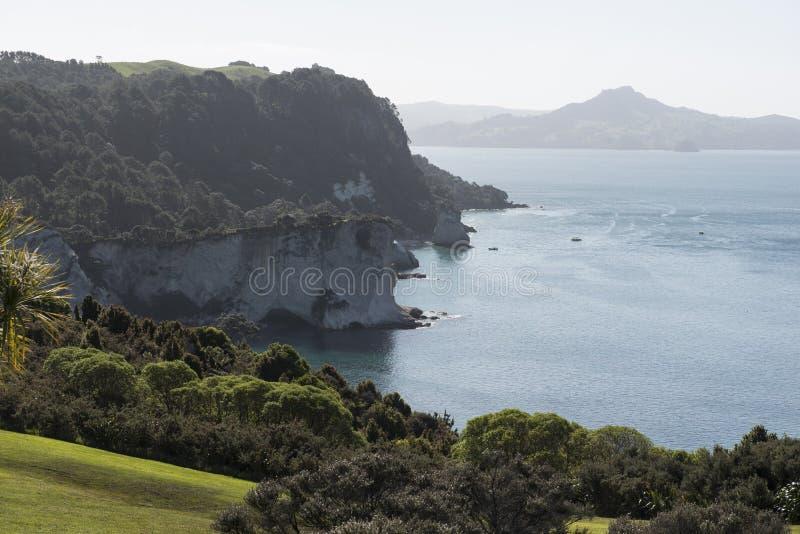 Praia Da Angra Da Catedral, Nova Zelândia Foto de Stock
