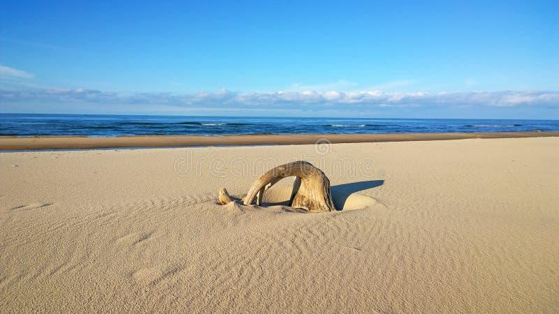 Praia da areia fotografia de stock