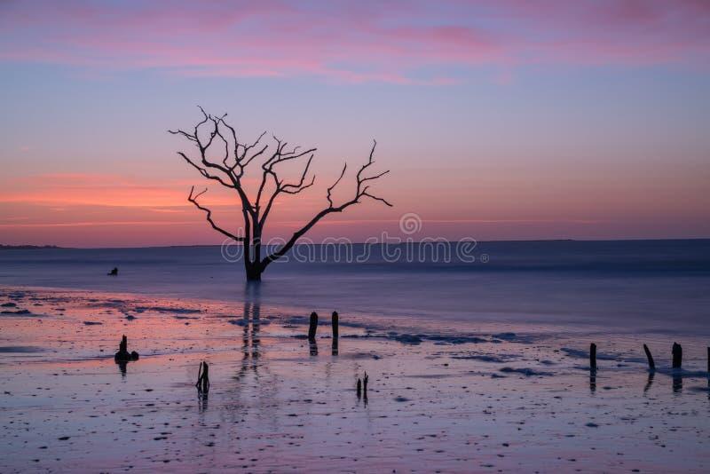 Praia da baía da Botânica no alvorecer foto de stock