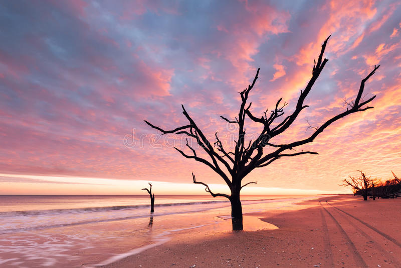 Praia da baía da Botânica no por do sol nebuloso foto de stock