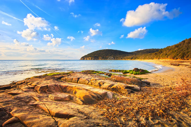 Praia da baía de Cala Violina em Maremma, Toscânia. Mar Mediterrâneo. Mim imagem de stock royalty free