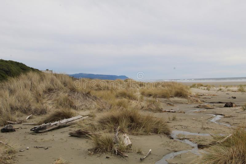 Praia da costa de Oregon imagem de stock royalty free