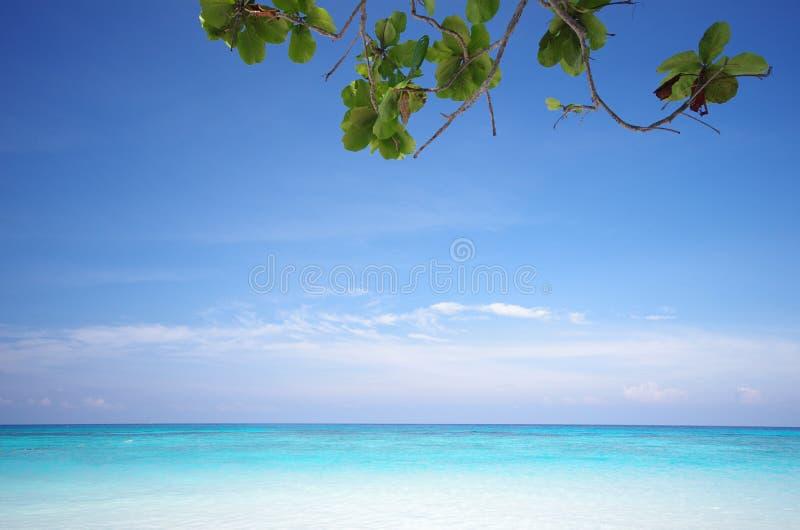 Praia da ilha e céu azul fotografia de stock royalty free