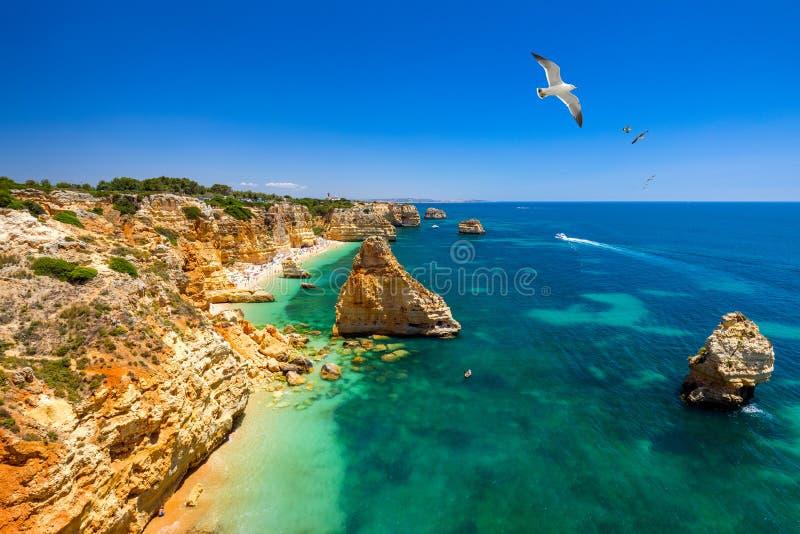 Praia da Marinha, pi?kny pla?owy Marinha w Algarve, Portugalia Marynarki wojennej plaża z latającymi seagulls nad plażą (Praia da obraz royalty free