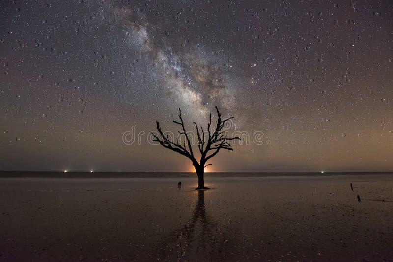 Praia da plantação da baía da Botânica na noite imagem de stock