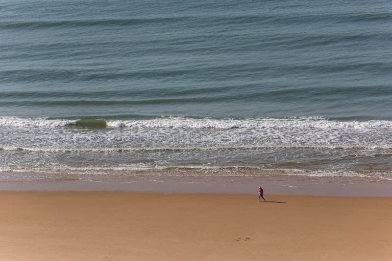 Praia da Rocha fotografia stock libera da diritti