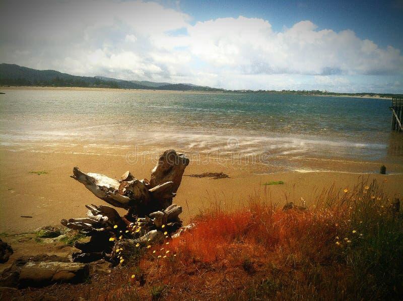 Praia da serenidade fotografia de stock royalty free