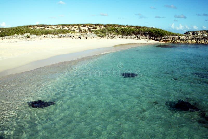 Praia das arraias-lixas fotografia de stock