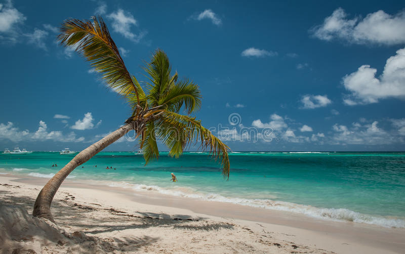 Praia das caraíbas em Punta Cana, República Dominicana foto de stock royalty free