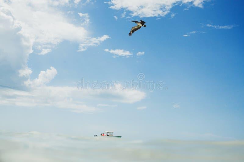 Praia das caraíbas, holbox mexicano México do oceano imagem de stock