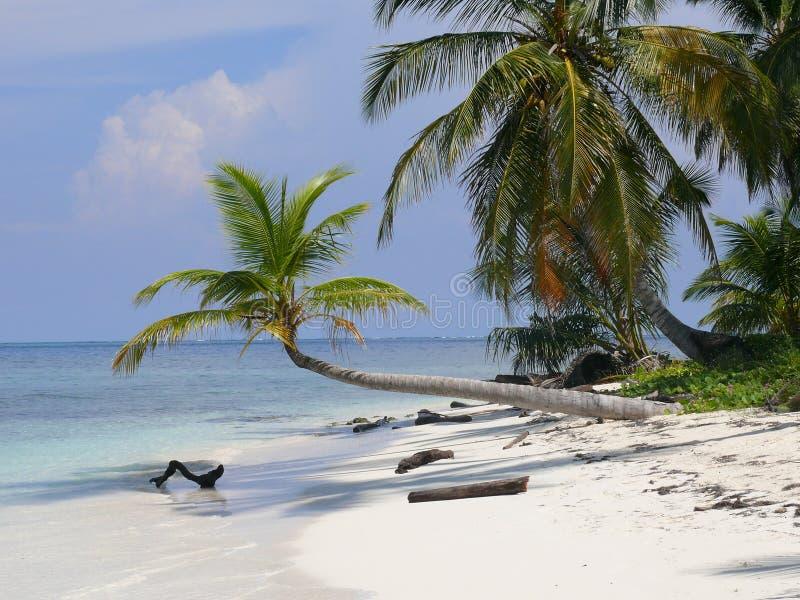 Praia das caraíbas San Blas fotografia de stock royalty free