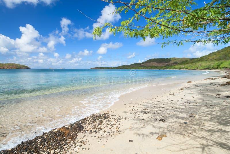 Praia das caraíbas tropical em Isla Culebra imagem de stock