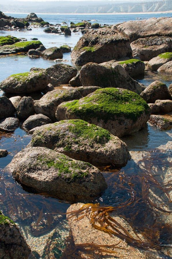 Praia de Algarrobo fotos de stock royalty free