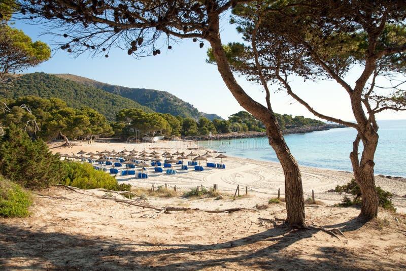 Praia de Cala Agulla em Cala Ratjada na ilha de Majorca, Espanha Medi fotos de stock royalty free