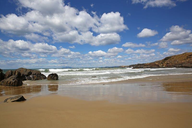 Praia de Cressy. Tasmânia fotografia de stock
