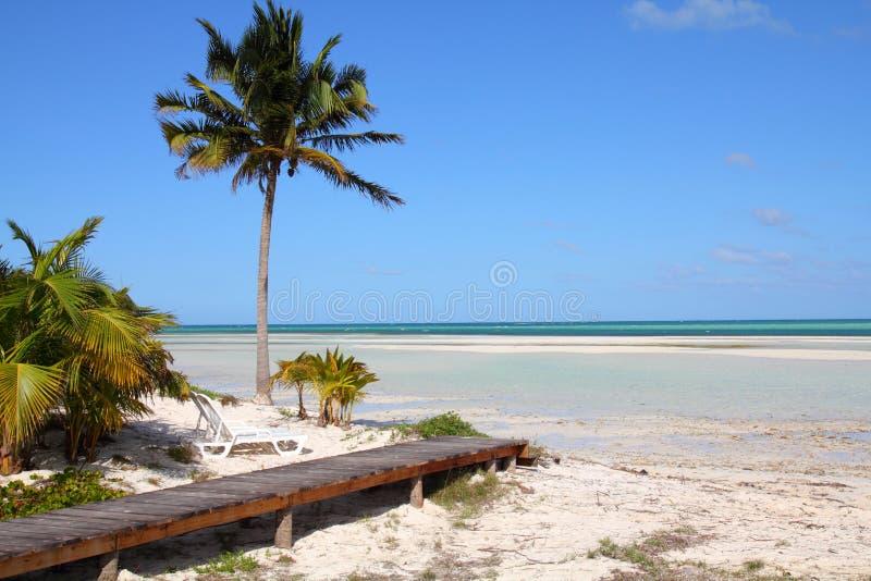 Praia de Cuba imagem de stock royalty free