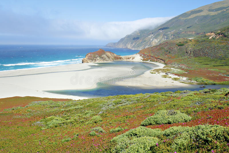 Praia de estado de Andrew Molera imagens de stock