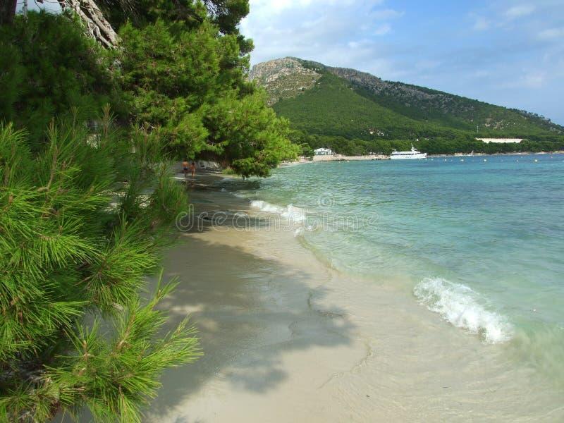 Praia de Formentor em Mallorca imagem de stock royalty free