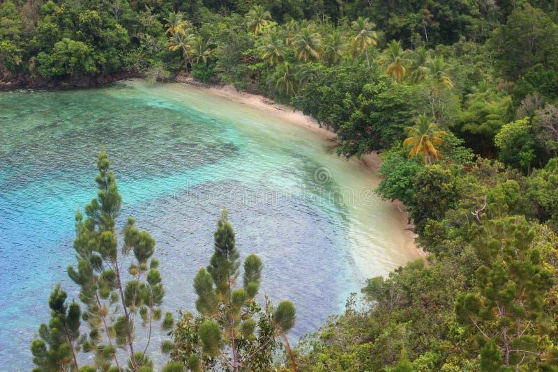 Praia de Harlem, Papua, Indonésia imagens de stock royalty free