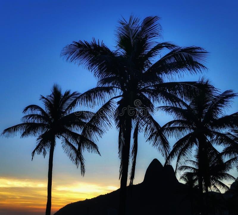 Praia de Ipanema image stock