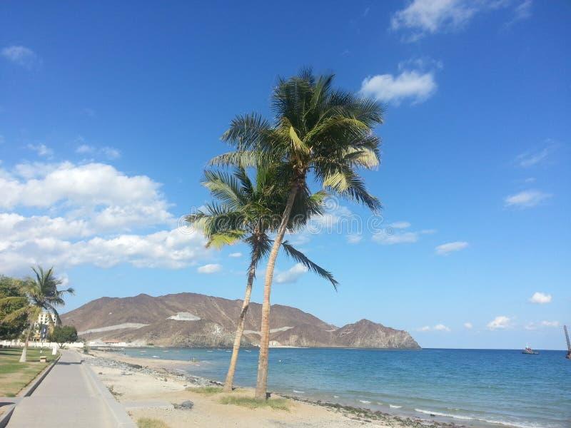 Praia de Khorfakkan fotos de stock royalty free