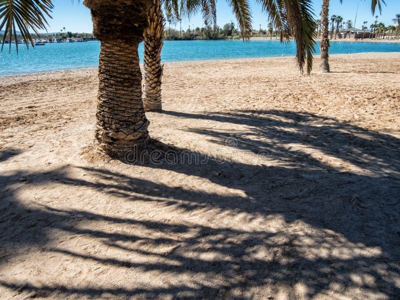 Praia de Lake Havasu fotos de stock royalty free
