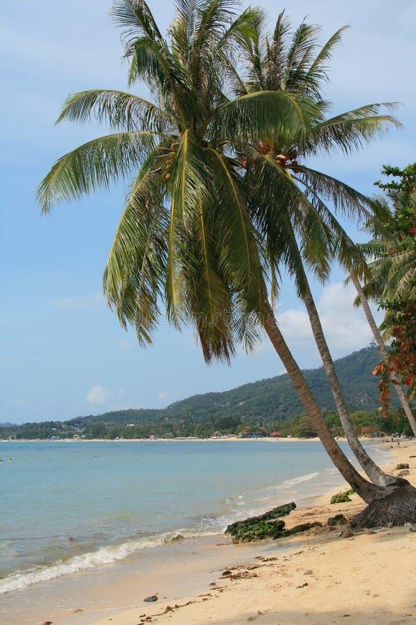 Praia de Lamai foto de stock royalty free