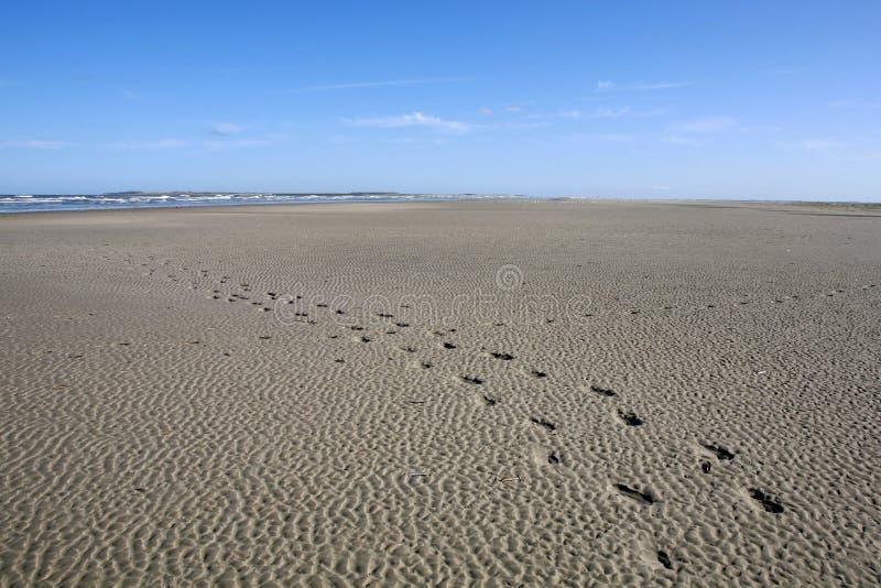 Praia de Langeoog fotos de stock royalty free