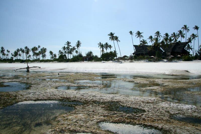 Praia de Matemwe, Zanzibar fotos de stock