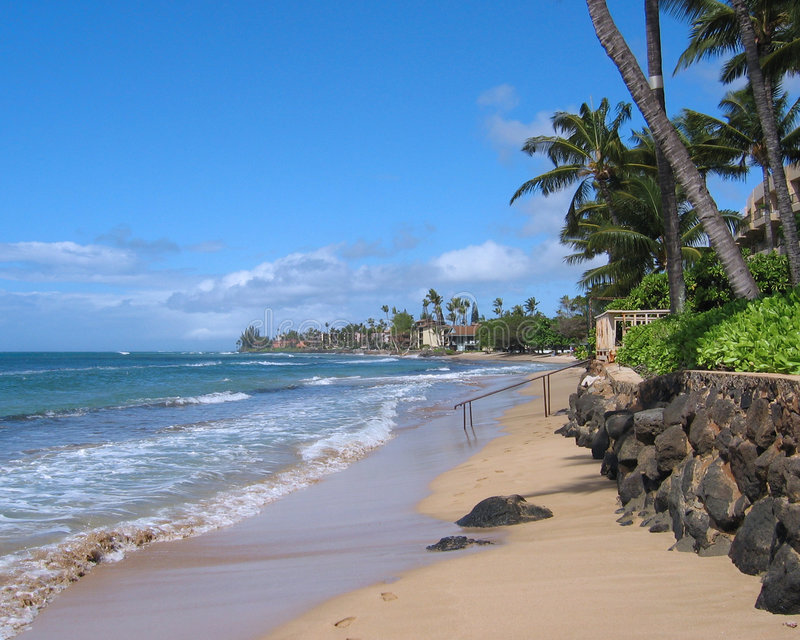 Praia de Maui fotos de stock royalty free