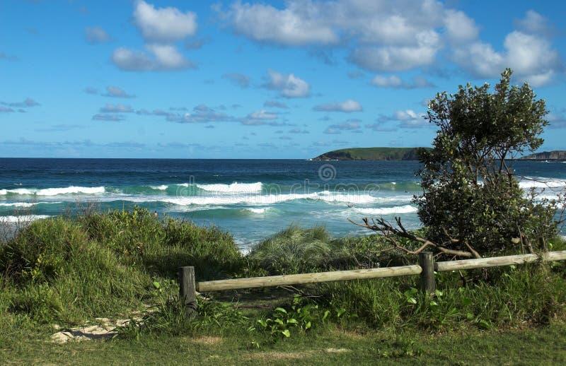 Download Praia De McCauleys Em Austrália Foto de Stock - Imagem de curso, destino: 538588