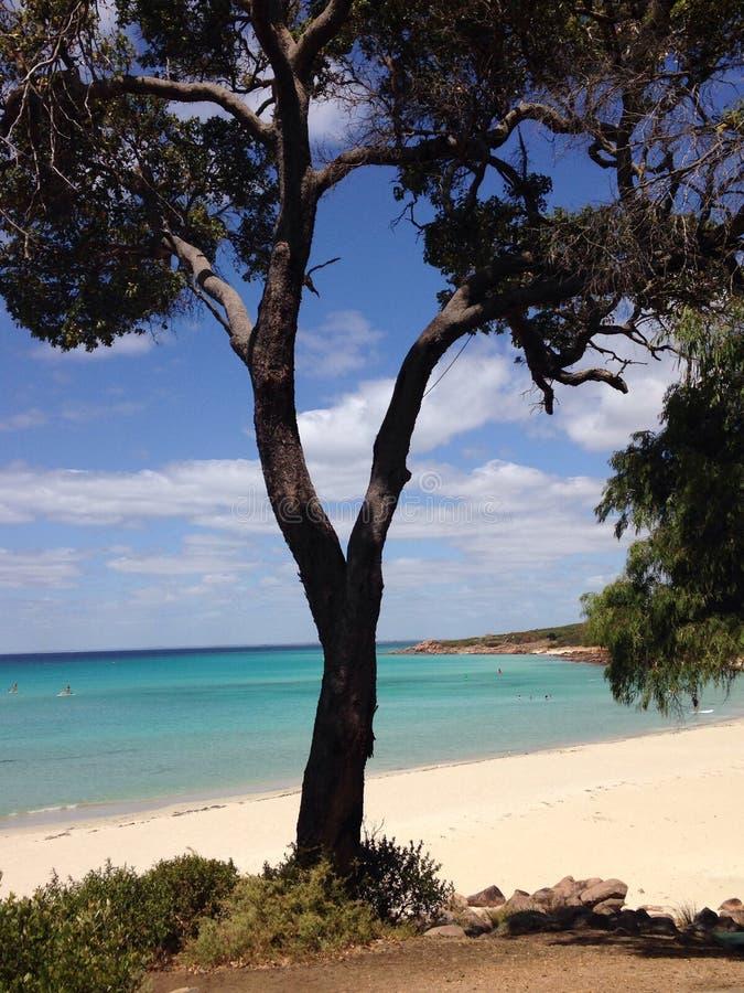 Praia de Meelup fotos de stock royalty free