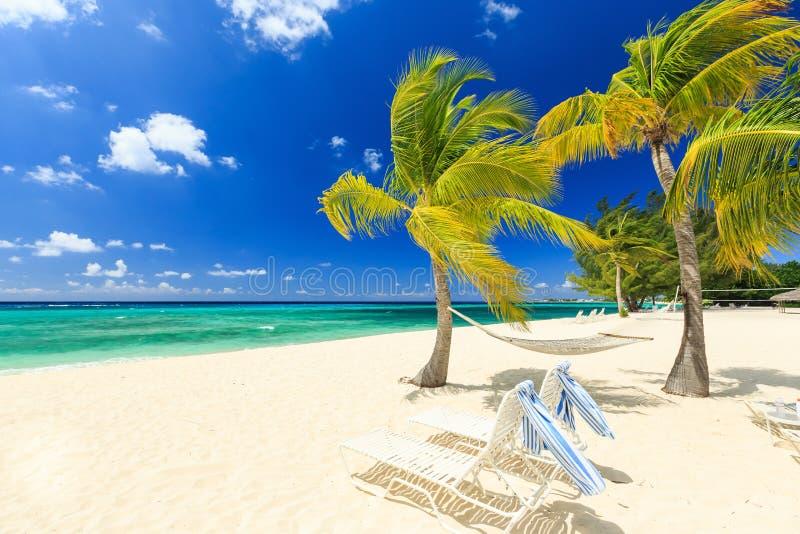 praia de 7 milhas, Grande Caimão foto de stock