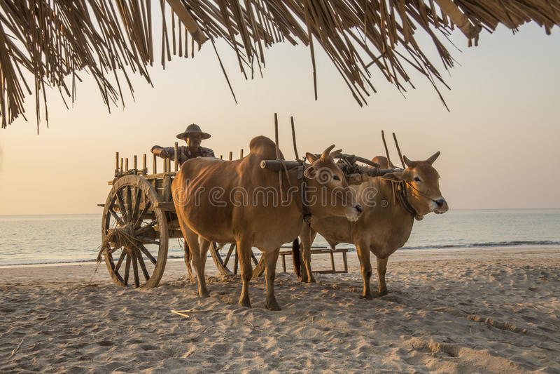 Praia de Ngapali - estado de Rakhine - Myanmar foto de stock