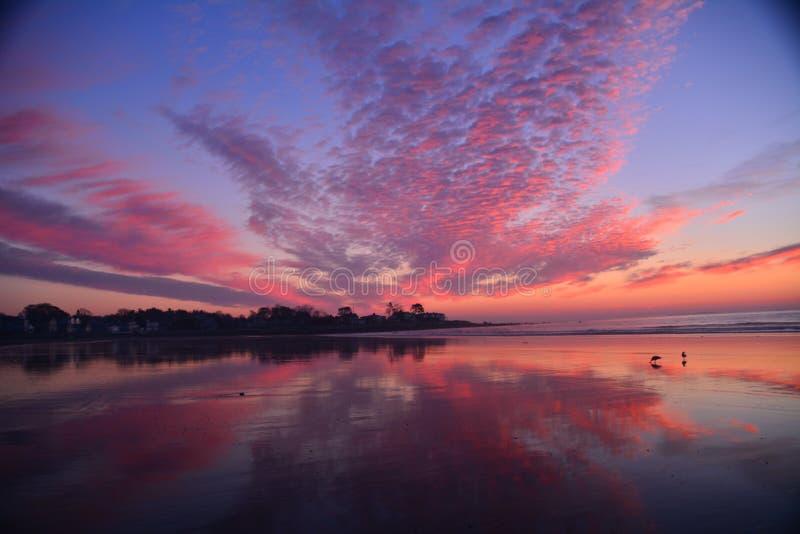 Praia de Nova Inglaterra destacada pelo nascer do sol brilhante; fotos de stock royalty free