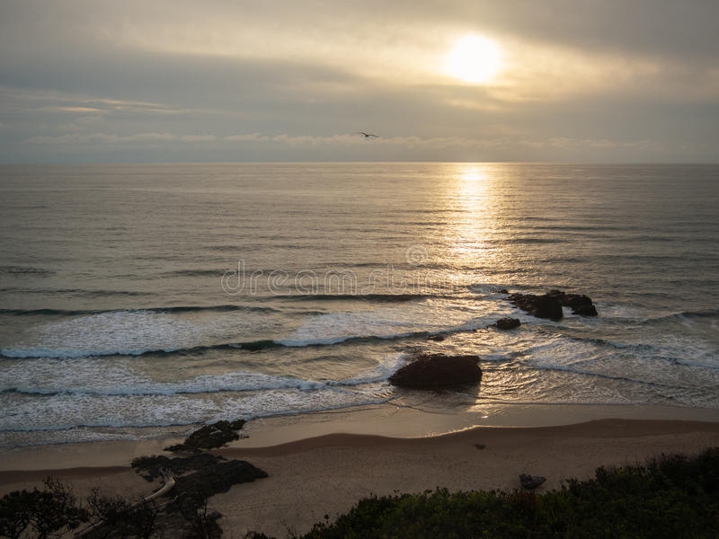 Praia de Oregon foto de stock royalty free