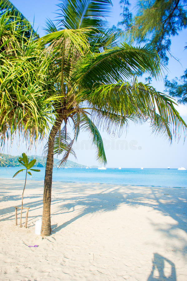 Praia de Patong da paisagem em Phuket, Tailândia fotos de stock royalty free